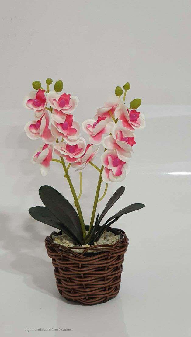 2860 ARRANJO ORQUIDEA MINI X2 26X14 - BRANCO CO...