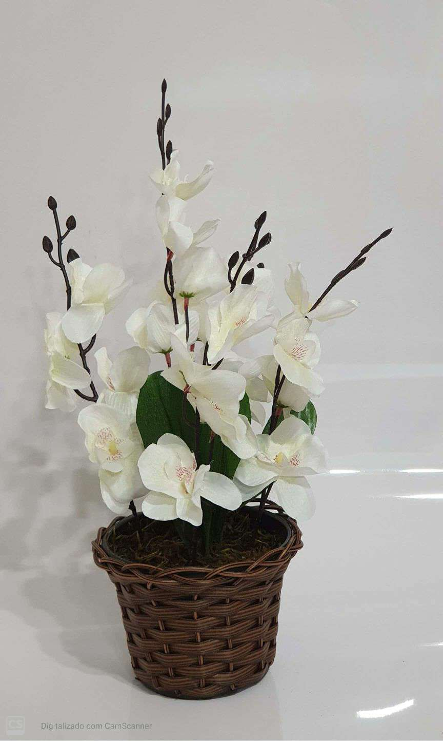 0057 ARRANJO ORQUIDEA RED X5 42X22 - BRANCO