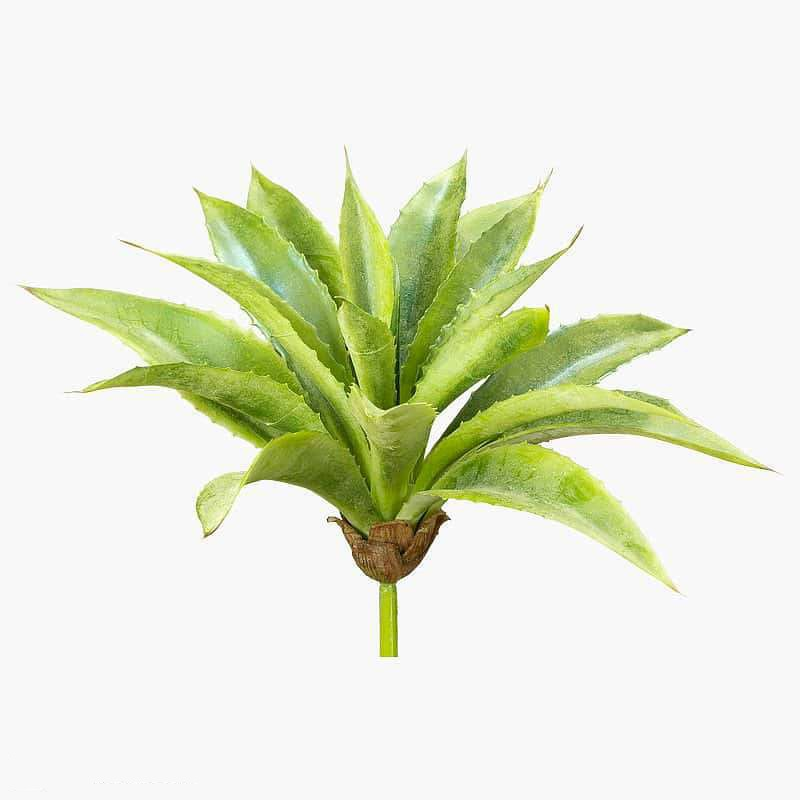 5770 F AGAVE NATURAL 30CM 0097-31